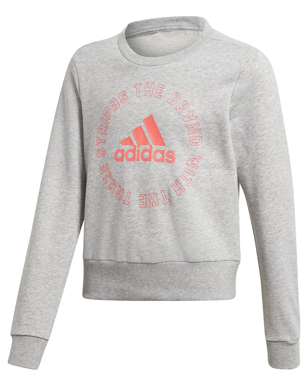 Bold Crew Sweatshirt JR MGreyHSigpnk