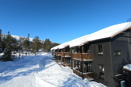 Ski House 303
